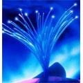 Bouygues Telecom et SFR passent un accord sur le déploiement de la fibre optique en zones très denses