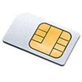 La progression du nombre de cartes SIM  est de 5% en un an