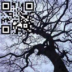 Des QR codes sur les tombes pour un hommage numérique