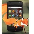 Mozilla Firefox fête ses 10 ans  avec de nouveaux défis