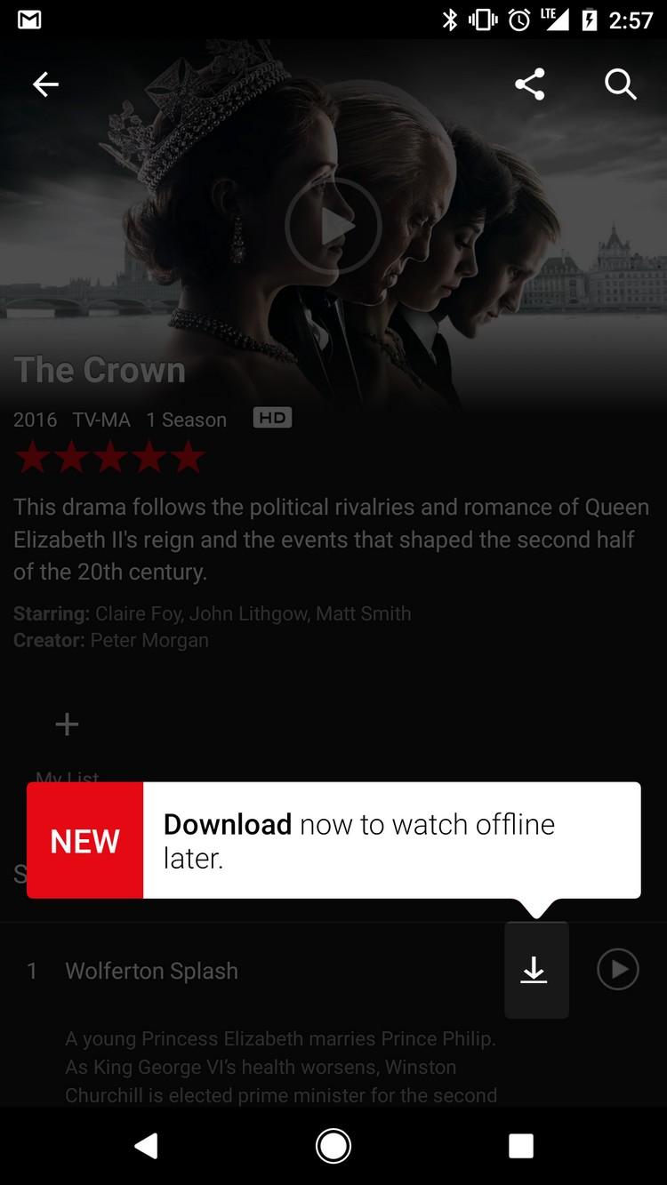 Netflix : le téléchargement tant attendu fait enfin son apparition