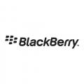 Nouveau BlackBerry Bold : RIM esp�re inverser la vapeur gr�ce � son nouveau smartphone