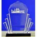 "SFR reçoit le "" Disability Matters Award 2013 """