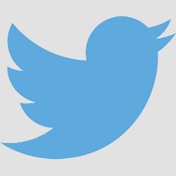 Twitter met en place des notifications lorsqu'un compte est attaqué par une agence gouvernementale